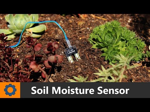 Arduino - Soil Moisture Sensor