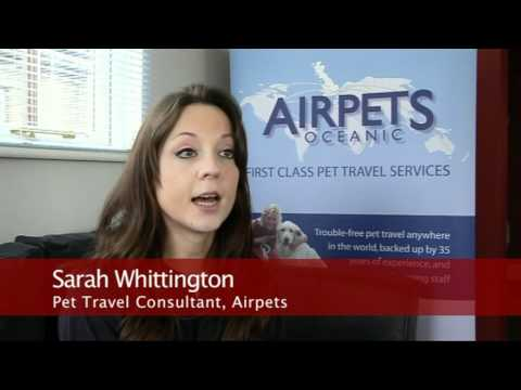 Worldwide Pet Travel From Airpets.com (Heathrow) - UK Pet Export