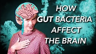 How the Gut Microbiome affects the Brain and Mind