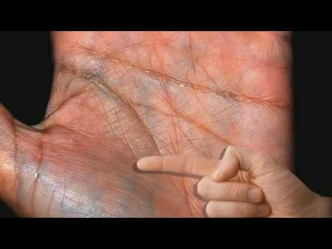 FULL Female Palm & Hand Reading Palmistry #10