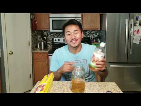 Homemade Gnat Trap - Apple Cider Vinegar