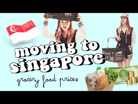 🇸🇬moving to singapore? this might help ✰ grocery & food prices singapore 🍓 ep.1⚫TheWickeRmoss