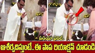 Funny Viral Video : Littile Girl High Five To Priest | Trending Videos | Spot News