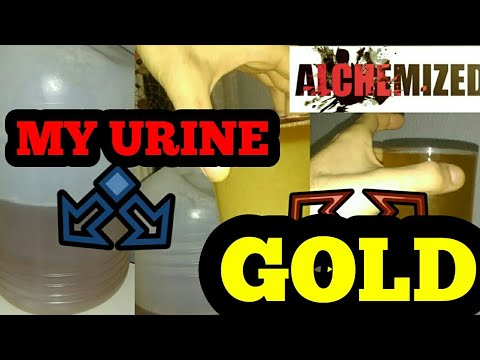 GOLD FROM URINE!?! - The most potent Ormus! (organic method)
