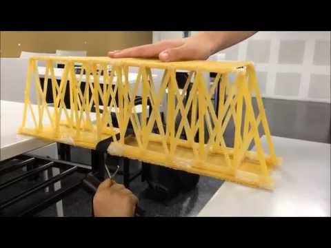 MECH270 Basic Mechanics 1 Spaghetti Bridge Project