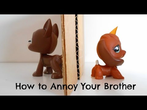 LPS: How to Annoy Your Brother