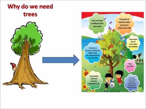 Go Green - solution to global warming!!! ppt