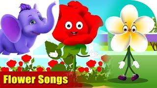 20 Best Flower Songs | 4K | Appu Series