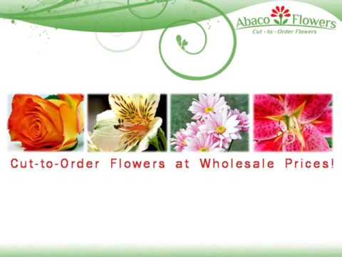 Wholesale Flowers in Bulk-Wedding Flowers by Abaco Flowers