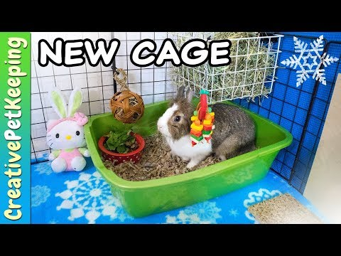 How to build a CHEAP DIY Rabbit Cage | Winter Theme