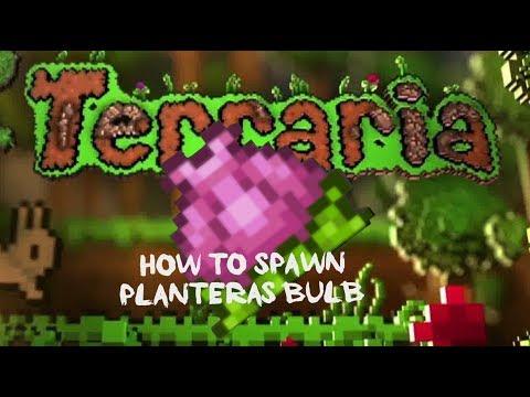 Terraria- How to get Plantera's Bulb