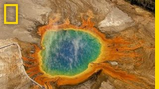 Five Must-See Attractions in Yellowstone | National Geographic