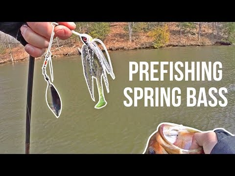 Which SPRING Bass Fishing Lures & Tactics Are Working? Prefishing For The First Tourney Of The Year!
