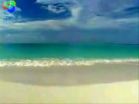 South Florida Beach- SWFLA Airport Shuttle Fort Myers Naples