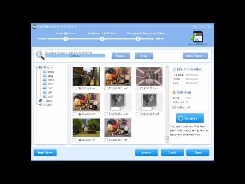 cardrecovery 6.10 build 1210 serial key