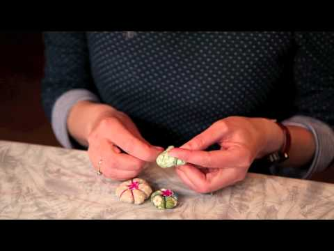 How to Make a Flower Hairband with Sania Pell