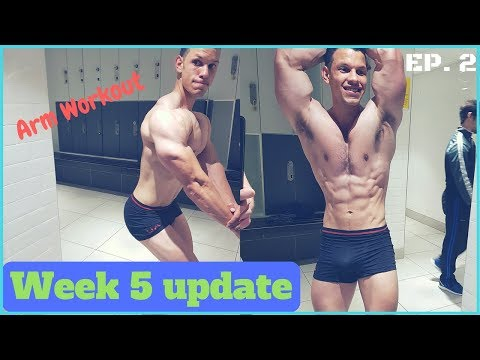 EP 2: Physique and Macro Update And Arm Focused Upper Body Workout