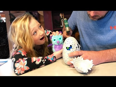 Never use a Hammer to open Hatchimals opening Burtle and Draggle