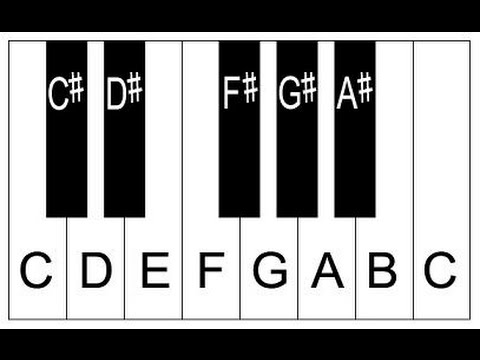 Piano Lesson 2: How To Label Piano Keys Part 2 - Piano Keyboard Layout
