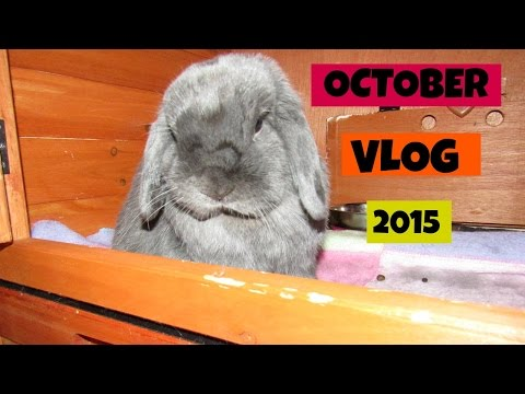 First Vlog Ever!! OCTOBER VLOG 2015