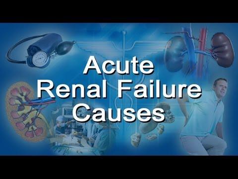 Acute Renal Failure Causes