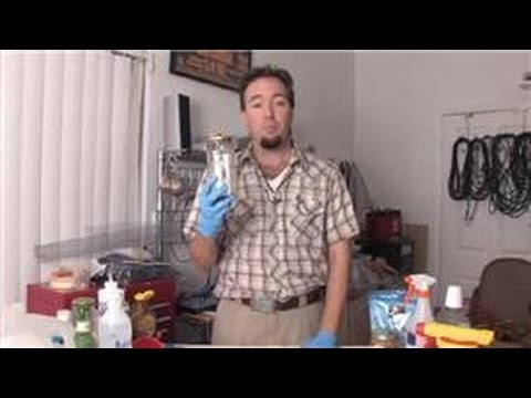 Pest Control Tips : How Can I Get Rid of Flies Without Spraying Insecticides?