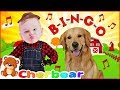 My Dog Song BINGO New Kids Songs Remix Sing Along Song For Children