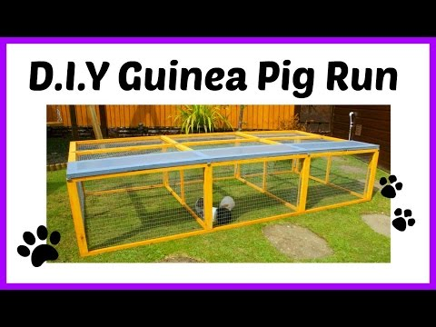 D.I.Y Guinea Pig Run