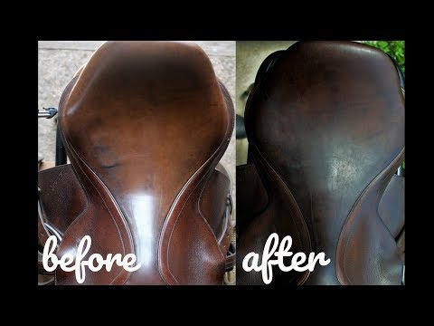 Darkening & Conditioning Tack w/ Olive Oil TESTED | Tacky Tuesday