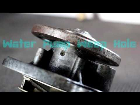 Signs Of A Water Pump Failure