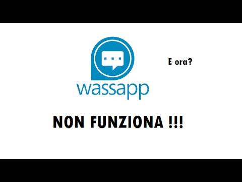 Whatsapp gratis senza Wassapp - Aggiornamento