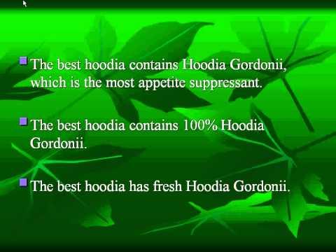 Where to Buy Hoodia?