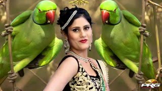 Suvatiyo (सुवटियो) FULL VIDEO BLOCKBUSTER Rajasthani No.1 Fagan Song 2016 | RDC Rajasthani Superhits