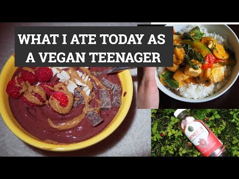 WHAT I ATE TODAY VEGAN