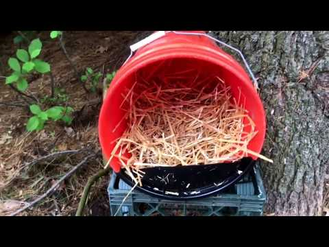 How To Make a Chicken Nesting Box Using a 5 Gallon Bucket