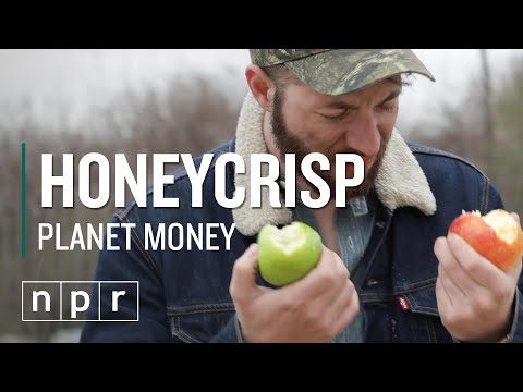 The Apple That Changed The World | Planet Money | NPR