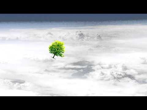 Tree in the Atmosphere