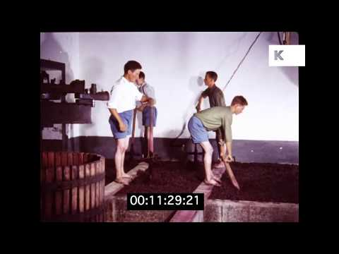 Traditional Wine Production in 1960s Portugal in HD | Kinolibrary