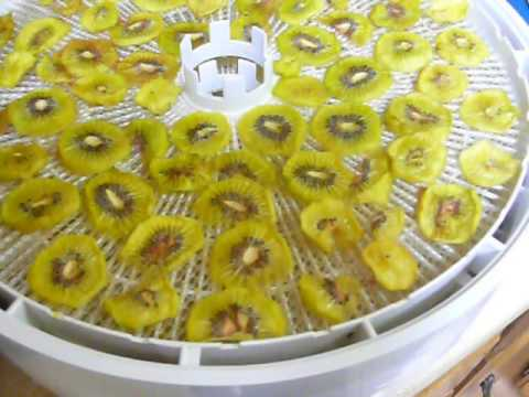 Dehydrating Kiwi Fruit - Best and Easiest Way To Dry