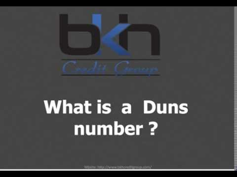 What is a DUNS Number?