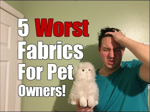 5 Worst Fabrics For Pet Owners!