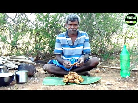 South Indian Chana Dal Vada | Village Famous Recipe Prepared by My Dad | Wild Food
