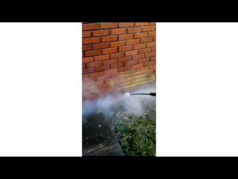 wall-moss-removal