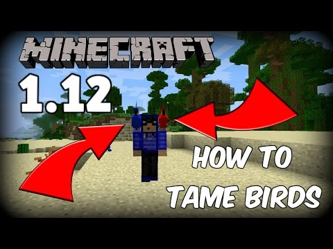 How to Tame Parrots in Minecraft 1.12! (PLEASE READ DESCRIPTION)