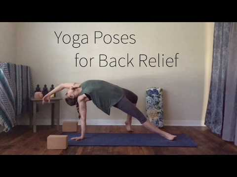 Yoga for Back Pain | Yoga Poses That Improve Spine Health | Strengthening Yoga Postures