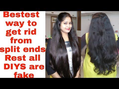 ₹0 में दो मुहे बाल खत्म करें हमेशा के लिए Naturally|How to get rid from split ends
