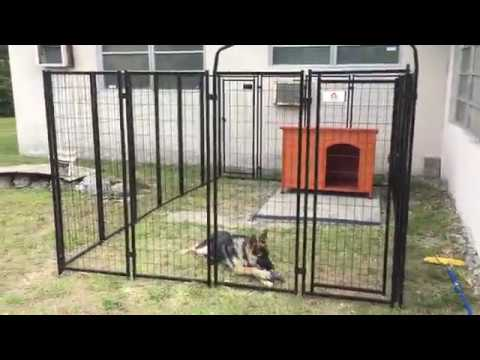 Welded wire dog kennel review