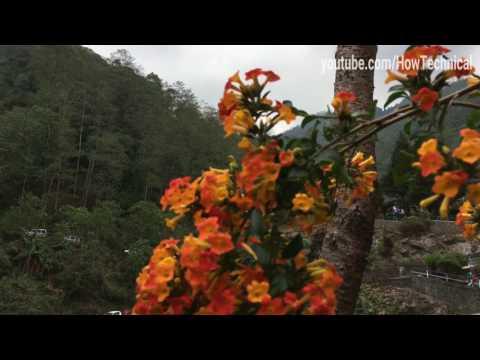 iPhone 4K Video Sample Part 2... Beautiful Nature Video in 4K.