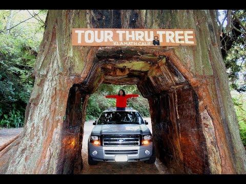 Visit Redwood National & State Parks