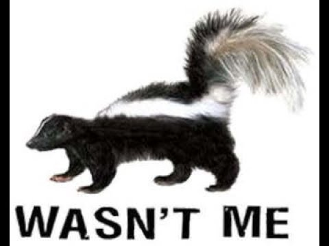 How To Keep Skunks Away From Your Property!!!